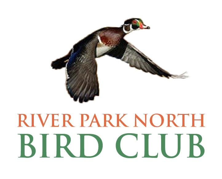 River Park North Bird Club