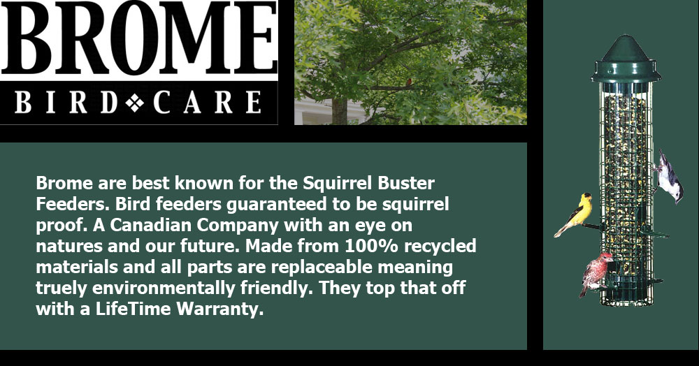 Brome are best known for the Squirrel Buster Feeders. Bird feeders guaranteed to be squirrel proof. A Canadian Company with an eye on natures and our future. Made from 100% recycled materials and all parts are replaceable meaning truely environmentally friendly. They top that off with a LifeTime Warranty. Could you imagine or expect more for your money?