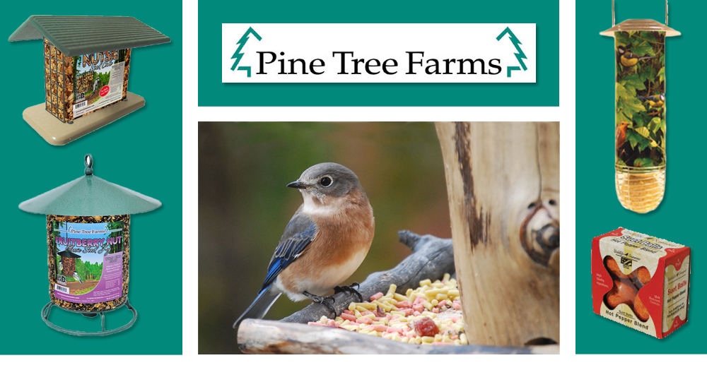 Pine Tree Farms, Wildlife Science, St. Alban's Bay Bird food, suet, seed cakes