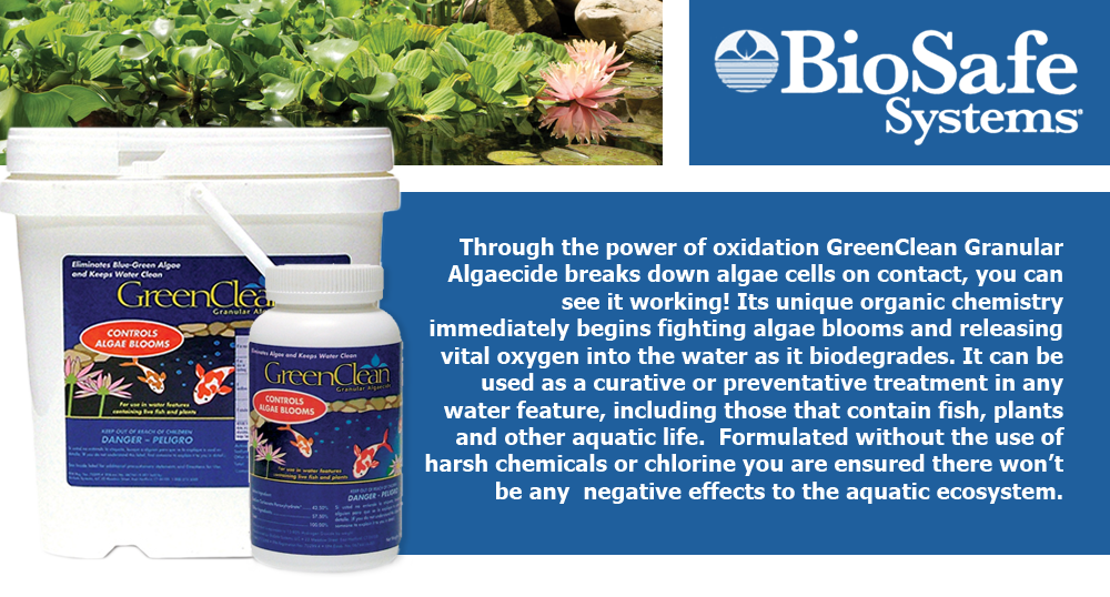 Through the power of oxidation GreenClean Granular Algaecide breaks down algae cells on contact, you can see it working! Its unique organic chemistry immediately begins fighting algae blooms and releasing vital oxygen into the water as it biodegrades. It can be used as a curative or preventative treatment in any water feature, including those that contain fish, plants and other aquatic life.  Formulated without the use of harsh chemicals or chlorine you are ensured there won't be any  negative effects to the aquatic ecosystem.
